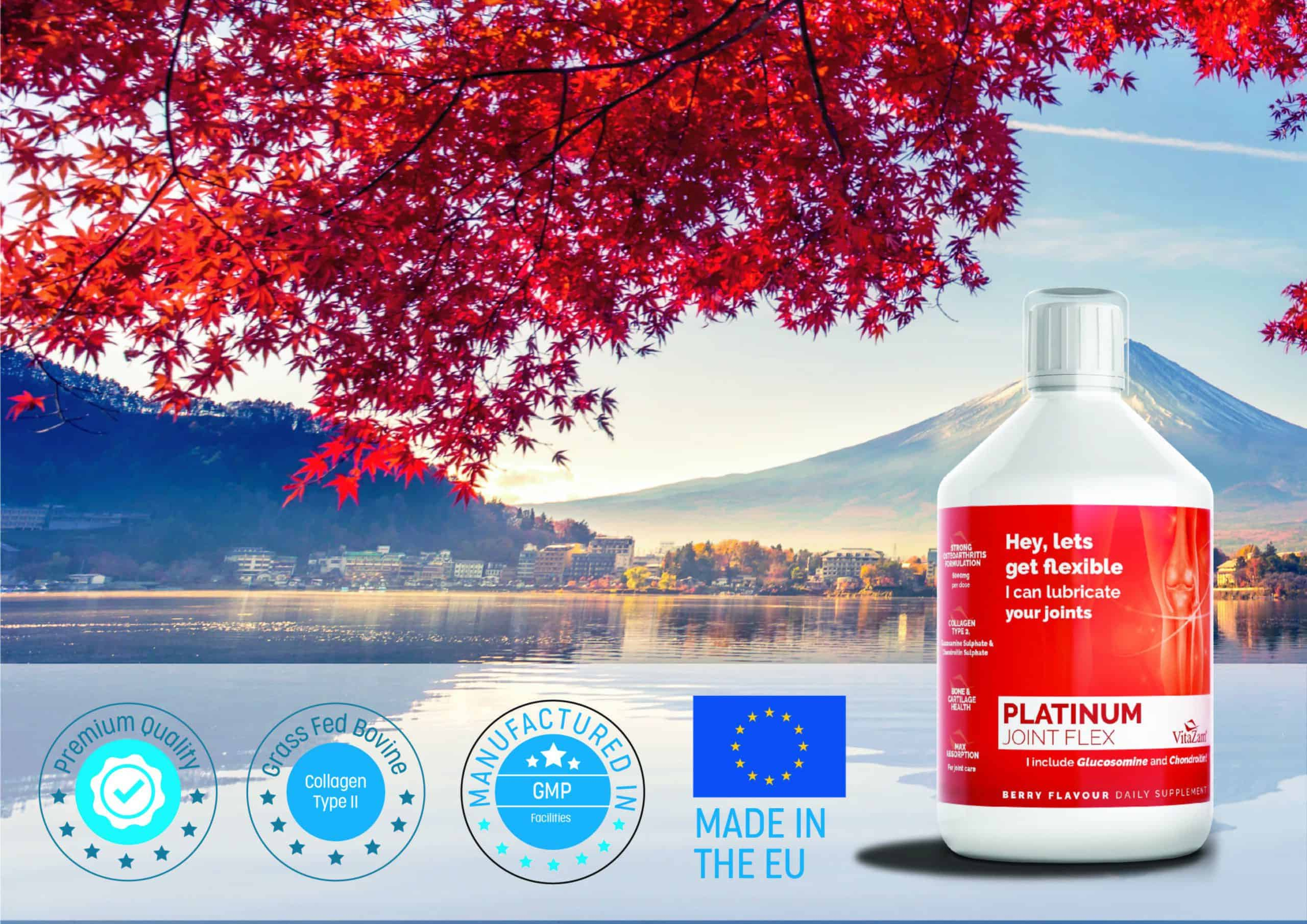 Platimun Joint Flex by VitaZam – Joint Care Supplements with Glucosamine and Chondroitin – Strong Osteoarthritis Formulation for Bones and Joint Health – 500 ml – Berry Flavour